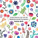 Clip Art - Colorful Watercolor Flowers