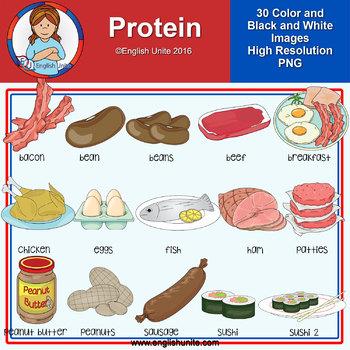 Clip art - Protein