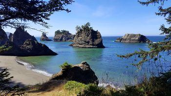Clip Art ~ 155 Photographs >SeaLife, Surf, Ocean Scenery of the Oregon Coastline
