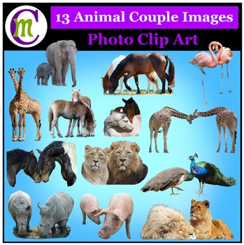 Animal Couples Photo Clipart