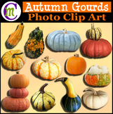 Clipart ♦ Autumn Gourds Photo Clipart (Clip Art)