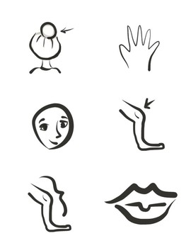 Clipart - Body - Great for teaching vocabulary in ESL or foreign languages