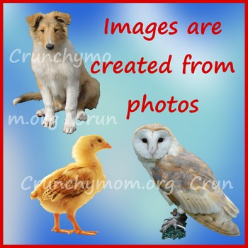 Farm Collection Photo Clip Art