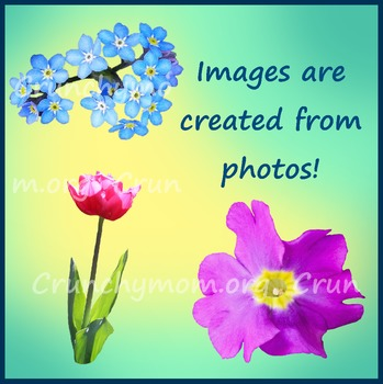 Flowers Clipart Mix 2 Photo Clipart
