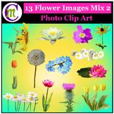 Clipart ♦ Flowers ♦ Flower Mix 2 Photo Clipart