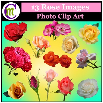 Clipart ♦ Flowers ♦ Roses Photo Clipart