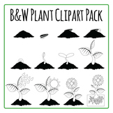 Plant Diagrams Commercial Use Clip Art Pack - black and white lineart