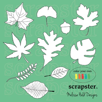 Leaves Color Your Own Clipart