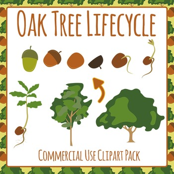 Oak Tree Lifecycle Clip Art Pack