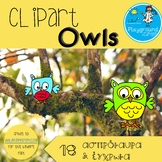 "Clipart ""Owlmania"" by Playground Learning (Spyropoulou Dimitra)"