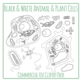 Cells - Plant and Animal Cells Diagrams in Black and White - Commercial Use