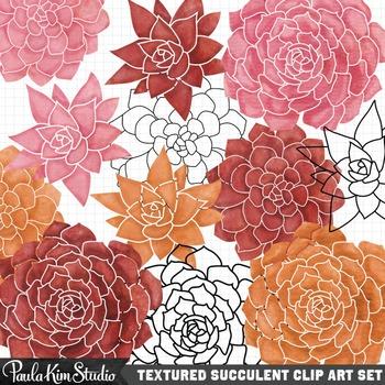 Clipart - Succulent Plants