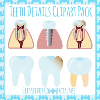 Tooth Detail Clip Art Pack for Commercial Use