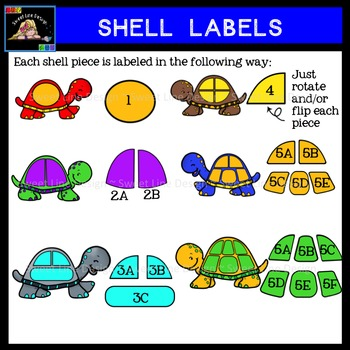 Clipart - Turtles and Shell Pieces {Sweet Line Design Clipart}