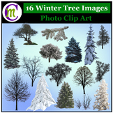 Clipart ♦ Winter Trees Photo Clipart (Clip Art)