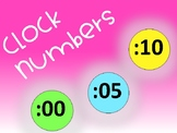 Clock Numbers {Color Variety}