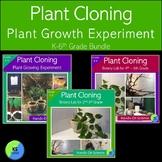 Bundle:  Cloning Plant Experiment with Kindergarten - 5th Grade Bundle