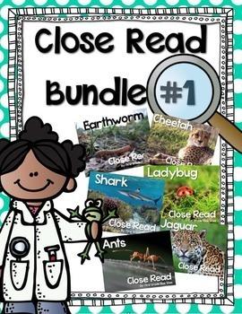 Close Read Bundle Option 1