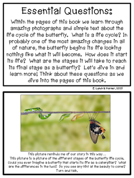 Close Read: Butterfly Life Cycle