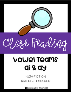 Close Read Passage & Comprehension - Vowel Teams: AI & AY