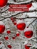 Close Read: White House Christmas Tree