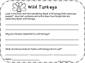 Close Read Wild Turkeys Non-Fiction First and Second Grade