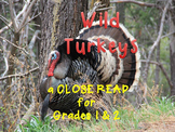 Thanksgiving Activities Wild Turkeys Close Reading with Art Activity