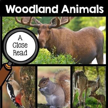 Close Read and Interactive Notebook Bundle- Woodland Animals
