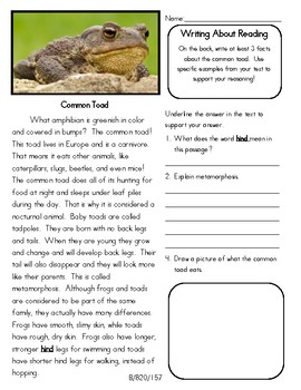 Close Reading 3rd, 4th, 5th, 6th Grade Non Fiction Passages: Nocturnal Animals