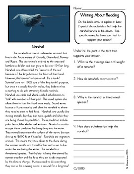 Close Reading 3rd, 4th, 5th, 6th Grade  Non Fiction Passages:  Arctic Animals