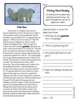 Close Reading 3rd, 4th, 5th Grade Non Fiction Reading Passages: Polar Bear