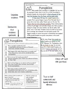 Reading Comprehension BIG Bundle Levels K-4