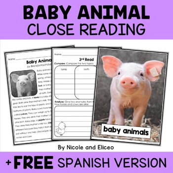 Close Reading Baby Animal Activities