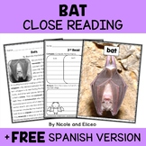 Bat Close Reading Passage Activities