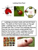Close Reading ~ Ladybug: Expository Text