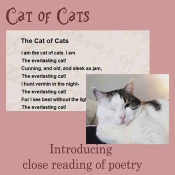 Close Reading of Poetry: Cat of Cats