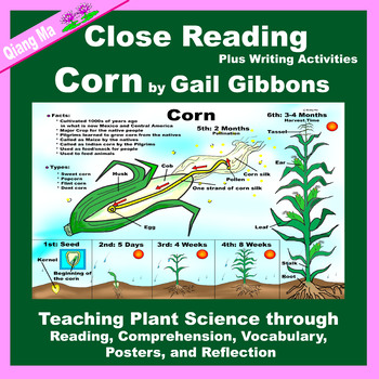 Close Reading: Corn by Gail Gibbons