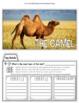 Close Reading -Desert Animals
