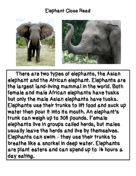 Close Reading ~ Elephant: Expository Text