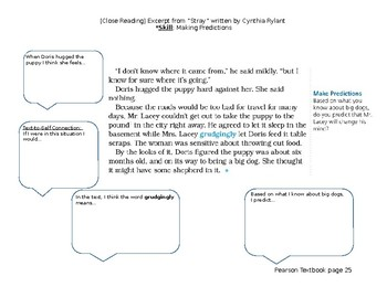 Close Reading Excerpt from Pearson Story Stray