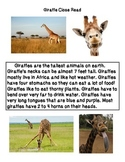 Close Reading ~ Giraffes: Expository Text