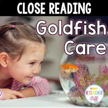 Close Reading: Goldfish Care