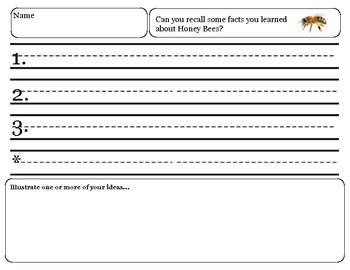 Close Reading ~ Honey Bee: Expository Text Response and Understanding