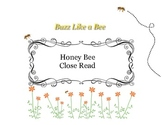 Close Reading ~ Honey Bee: Expository Text Response and Un