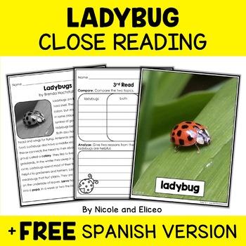 Ladybug Close Reading Passage Activities