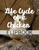 Life Cycle of a Chicken Flipbook