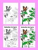 Close Reading: Monarch Butterfly