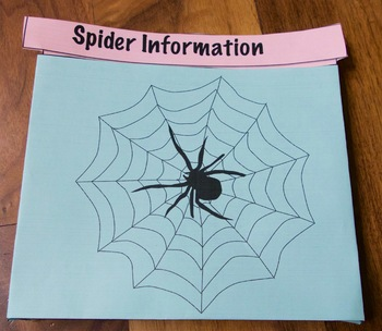 Close Reading Nonfiction Article One on Spiders