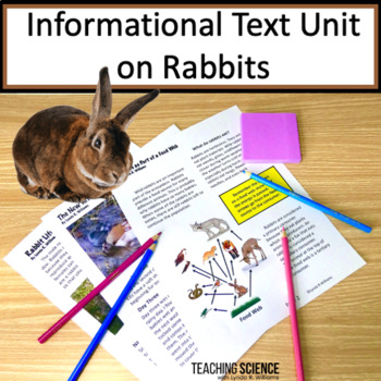 Close Reading Passage on Rabbit Life Cycle With Interactiv