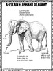 Close Reading Passages 2nd-5th grade Elephant Theme (3 levels per passage)